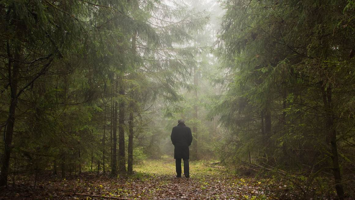 Man walking alone in forest
