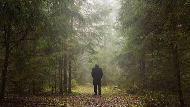 Man walking alone in forest