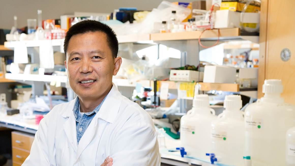 Dr. Yu Tian Wang standing in his lab in a white coat.