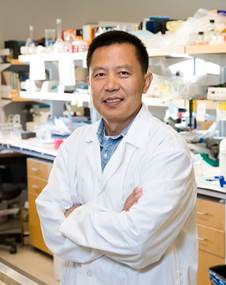 Dr. Yu Tian Wang in his lab