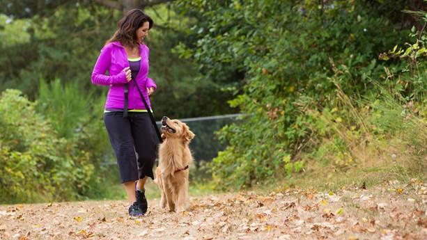 Woman walking her golden retreiver in park