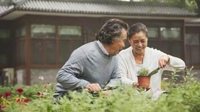 Senior couple smiling in garden