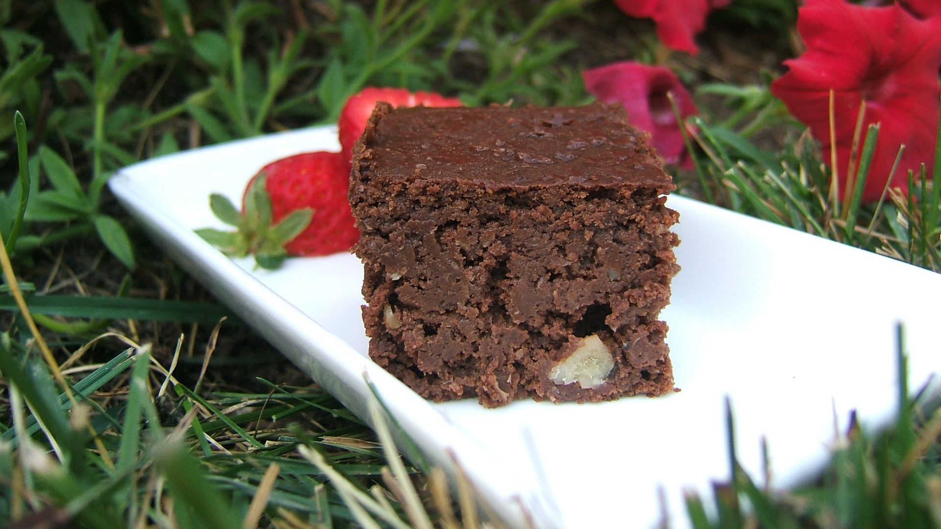 Chocolate walnut brownies